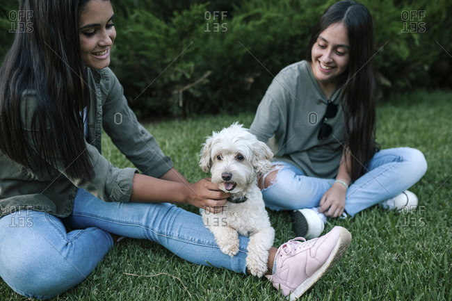 Teen girl friends playing with poodle dog outdoors