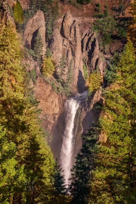 Beautiful waterfall between trees in yellowstone national park