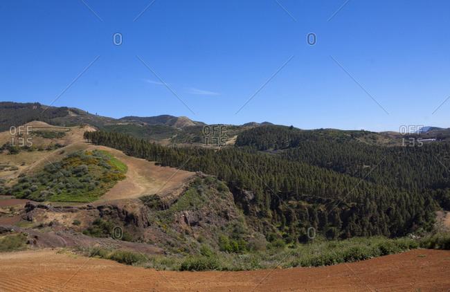 Landscape of Lomo del Palo in Gran Canaria