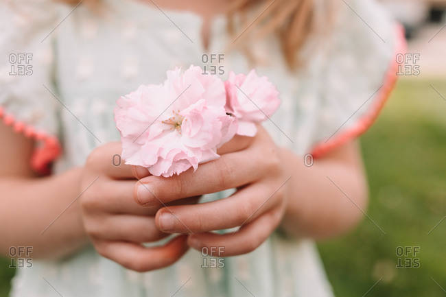 Toddler girl holding cherry blossoms