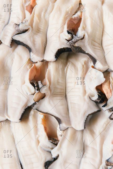 Fresh cuttlefish cut open at Caribbean seafood market