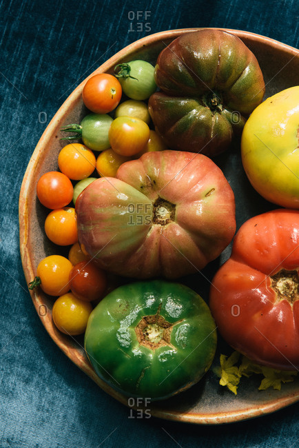 Overhead of colorful bunch of fresh tomatoes from the garden