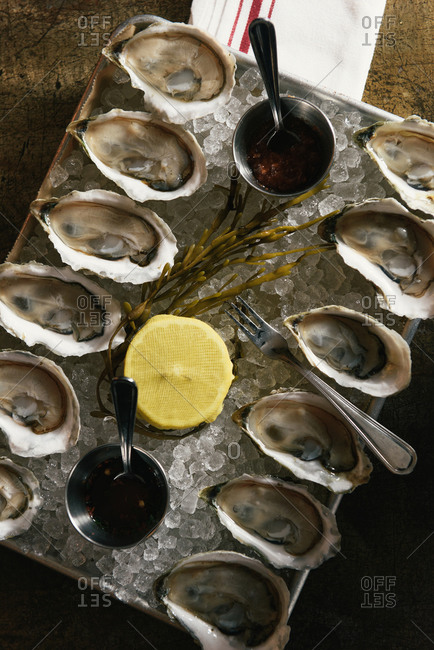 One dozen oysters served on ice as appetizers from overhead