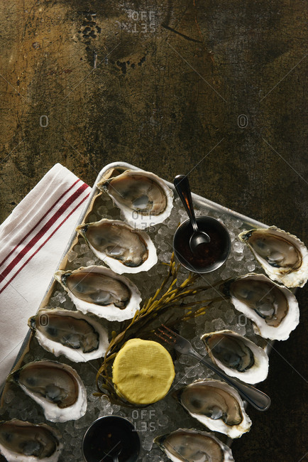 Platter of one dozen oysters on metal tabletop at restaurant