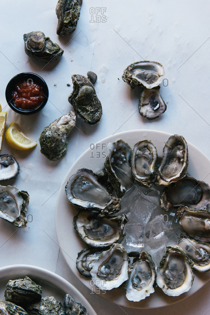 Platters of freshly shucked oysters set out for friends celebration