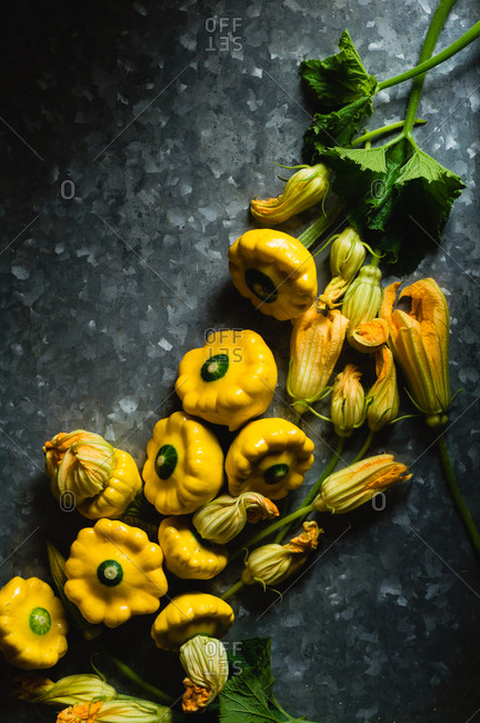 Bunch of freshly harvested patty pan squashes