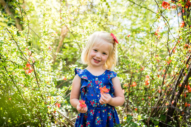 Adorable little girl picking flowers in the woods