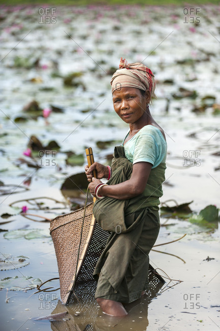 A woman uses a bamboo shovel-shaped net to fish for crabs