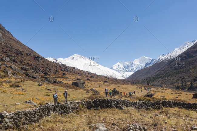 Trekkers make their way along the trail between Langtang and Kyanjin Gompa with views of Tserko Ri and Ganchempo in the distance