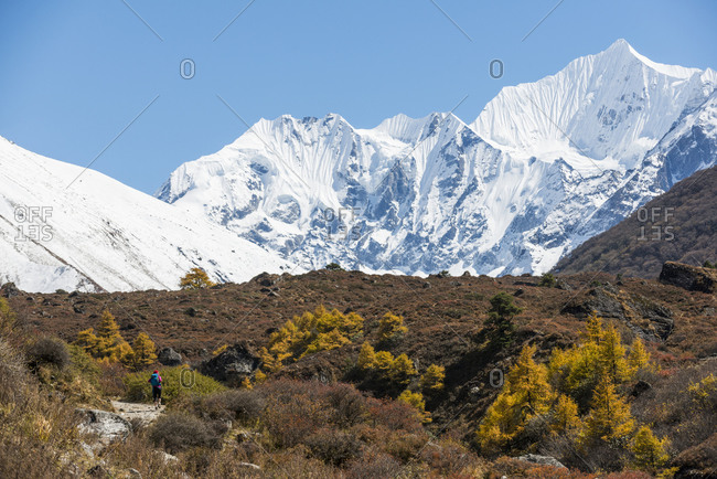 Trekking along the trail between Langtang and Kyanjin Gompa in the Langtang valley in Nepal