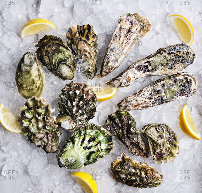 Beautiful composition with oysters, lemon wedges and ice