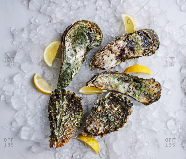 Selection of raw oysters on crushed ice with lemons