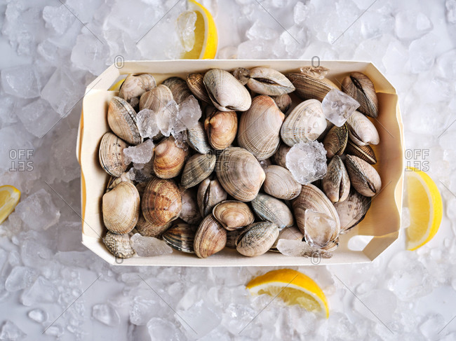 A box of raw quahog clams with lemon wedges on cubed ice