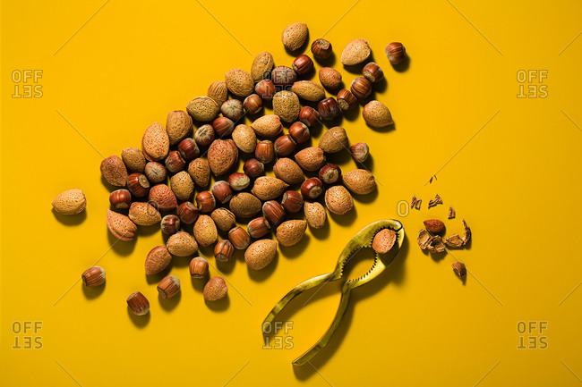 Natural composition from different types of nuts in shell and nutcracker on a yellow background with soft shadows, copy space. Top view.