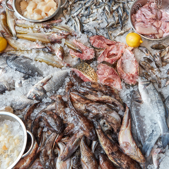 Steaks and various whole raw fish with lemon on ice in a shop window seafood. Healthy food for sale. Products for cooking grill and steaks. Top view