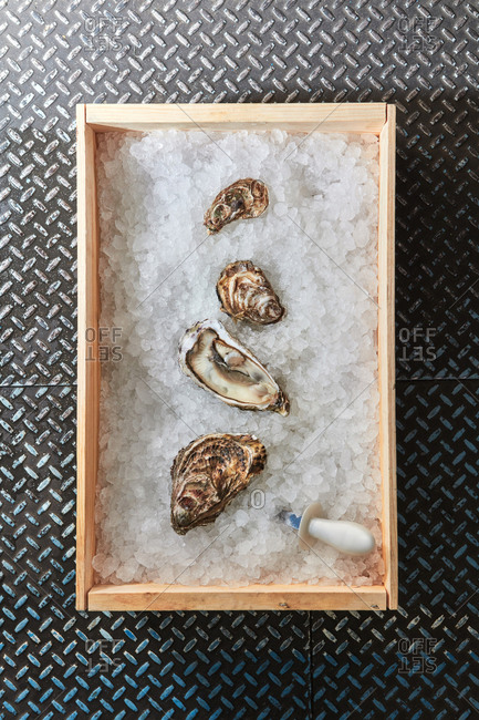 Fresh chilled closed and open oysters on ice in a wooden box on a metal surface with copy space. Healthy sea food. Top view