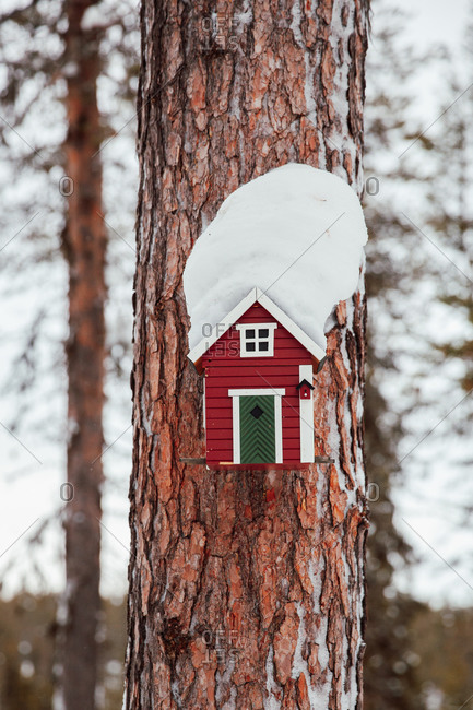 Cute little red birdhouse on a tree covered in snow