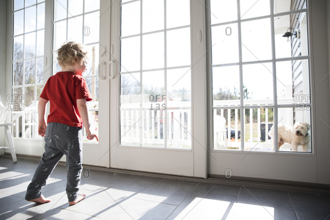 Toddler Boy Looks Out Large Sliding Glass Door at Dog on Deck