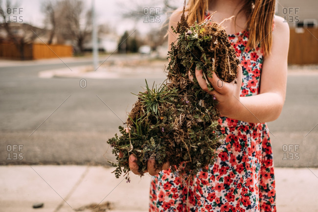 Cropped image of young girl hold large chunks of dirt