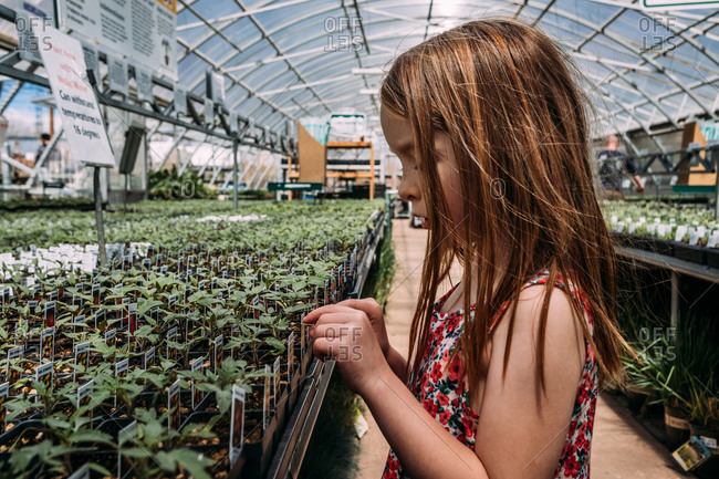 Close up of young girl at a green house looking at plants