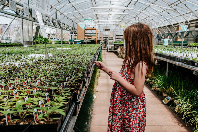 Side view of young girl looking at plants in green house
