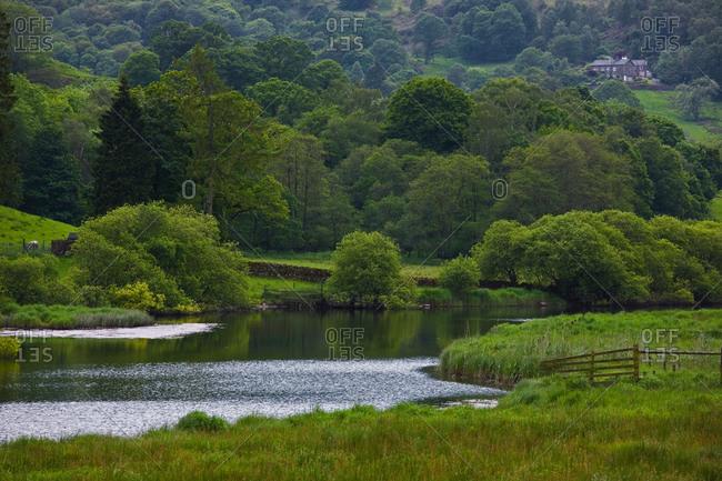 Small river at the British Lake District