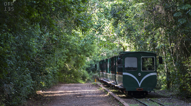 Passenger train at the Iguacu National Park in Argentina
