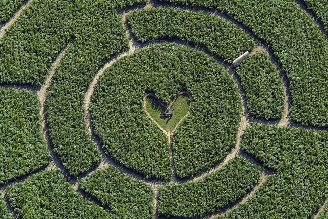 July 30, 2003:  - July 30, 2003: Germany- Iffeldorf- maze with heart in the center- aerial view