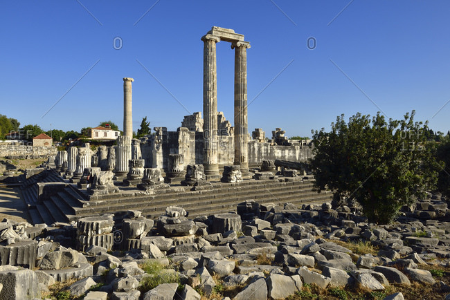 Turkey- Aydin- Ionia- View of Apollon temple at archaeological site of Didyma