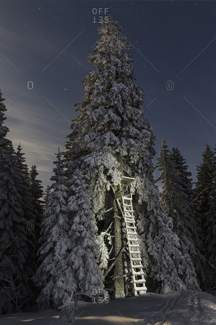 Germany- Bavaria- View of Bavarian Forest