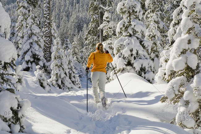 Austria- Salzburger Land- Altenmarkt-Zauchensee-  	 Young woman cross-country skiing- rear view