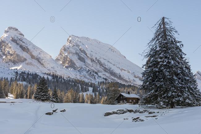 Switzerland- Canton of St. Gallen- near Toggenburg- Alt St. Johann- View to Mountains Churfirsten in winter