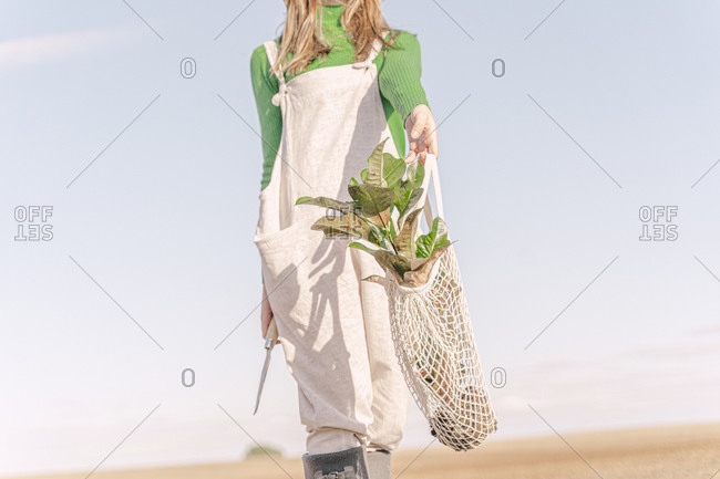 Young woman standing on stool on dry field- carrying plant in a net