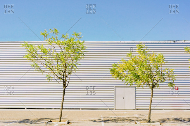 Two trees in front of industrial building