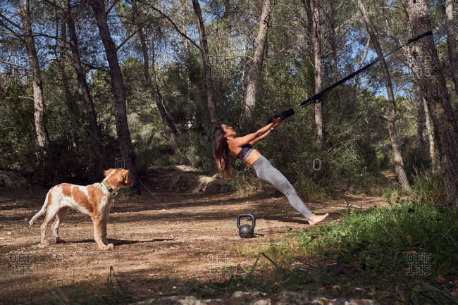 Side view of young fit female in activewear pulling up with fitness straps training chest muscles and arms while walking dog in park