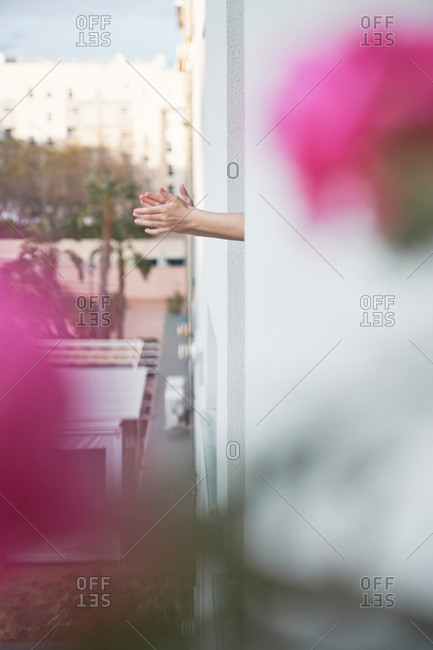 Through blurred pink flowers view of crop person clapping hands out window while chilling on balcony of modern apartment of multistory building in city