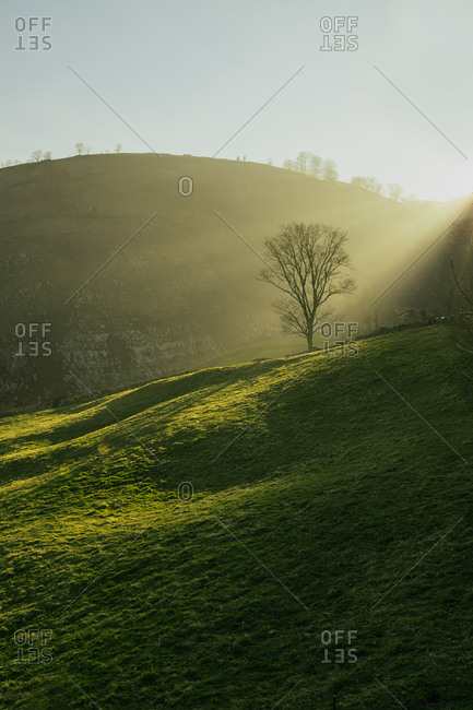 Tranquil hazy view of green trees and hills covered with grass and illuminated with sun in Cantabria