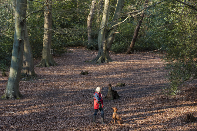 Woman plays with her dog in Putney Heath