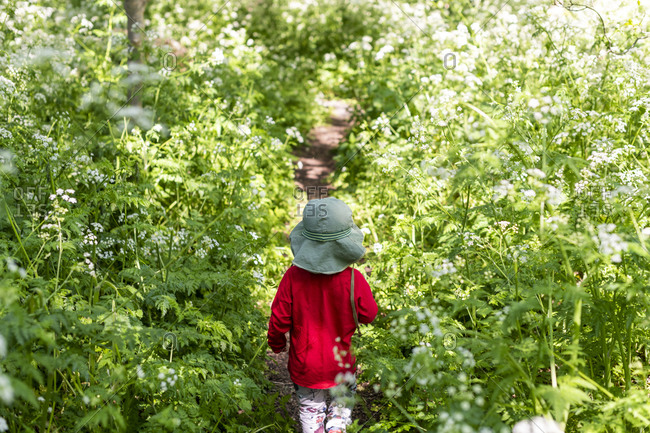 A toddler exploring an overgrown trail in the Lea Valley in London