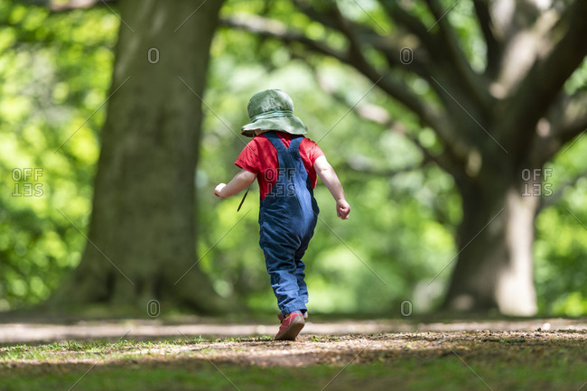 A toddler playing in the woods at Hampstead Heath in London