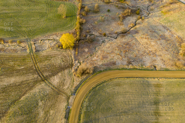 Aerial view of spring landscape of dirt road, willow tree and farm fields in Middlebury, Vermont