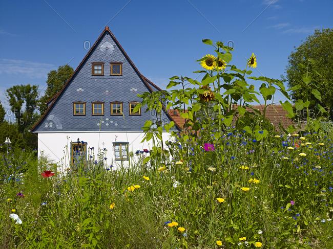 Garden with house near Bad Schandau, Schsische Schweiz-Osterzgebirge, Saxony, Germany