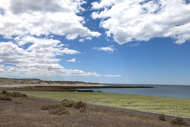Atlantic coast near Puerto Madryn, Patagonia, Argentina, South America