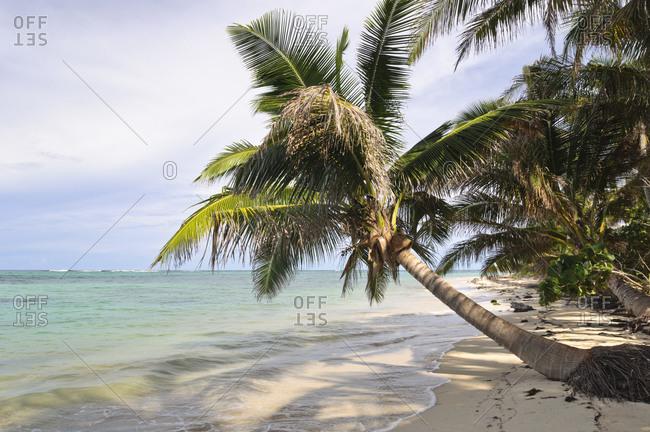 Caribbean coastal landscape, Little Corn Island, Nicaragua, Central America