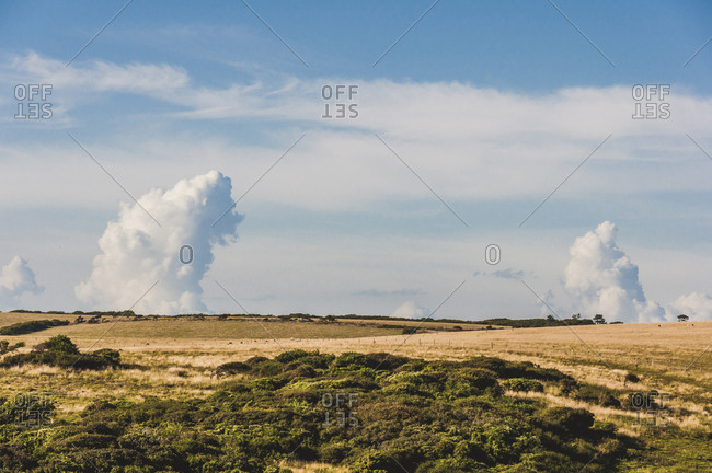 Seven Sisters, South Downs, Sussex, Southern England, United Kingdom