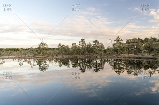 Lake at Viru Raba or bog at Lahemaa National Park in autumn morning