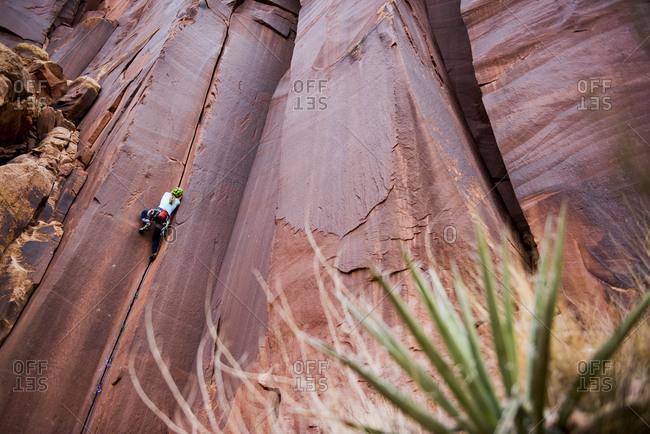 A woman rock climbing in the desert.