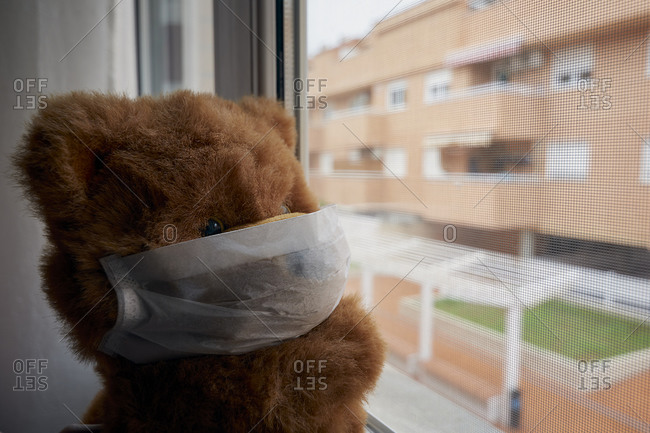 Teddy bear with face mask looking out the window quarantined covid-19