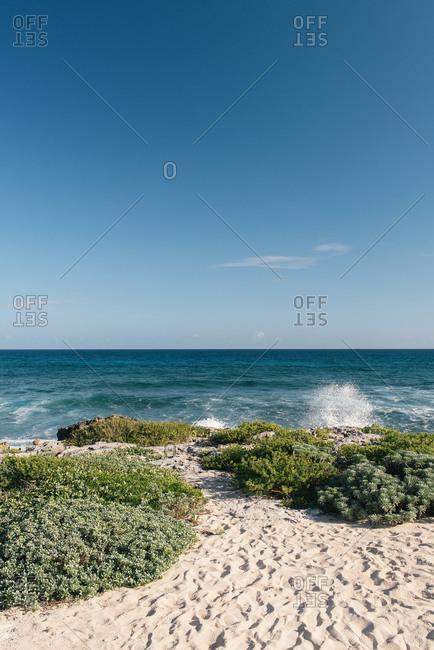 Caribbean sea horizon and white sandy beach on Cozumel