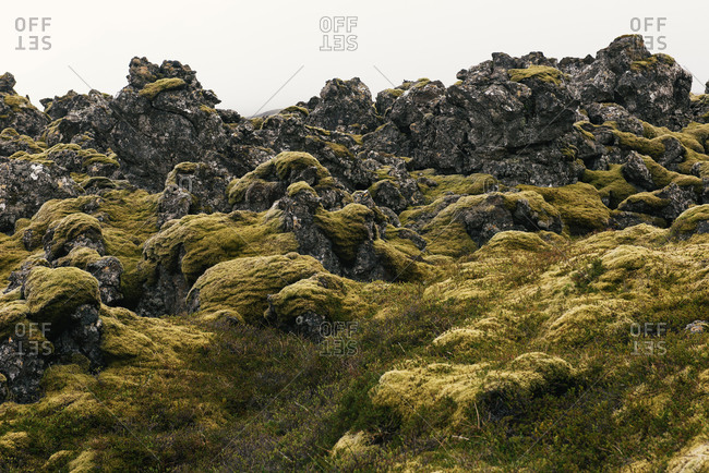 Moss covered lava flows in dramatic Iceland wilderness